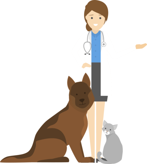 vet with cat and dog